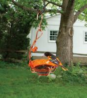 Songbird Essentials Copper Single Cup Jelly Oriole Bird Feeder