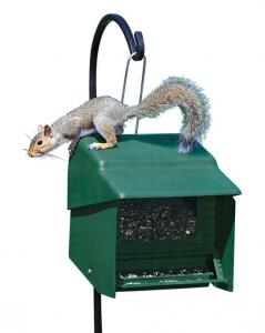 Squirrel Proof Bird Feeders by Homestead