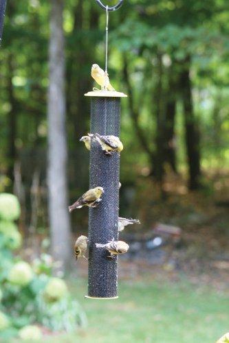 Bird's Choice Magnet Mesh Bird Feeder w/Tray - Yellow