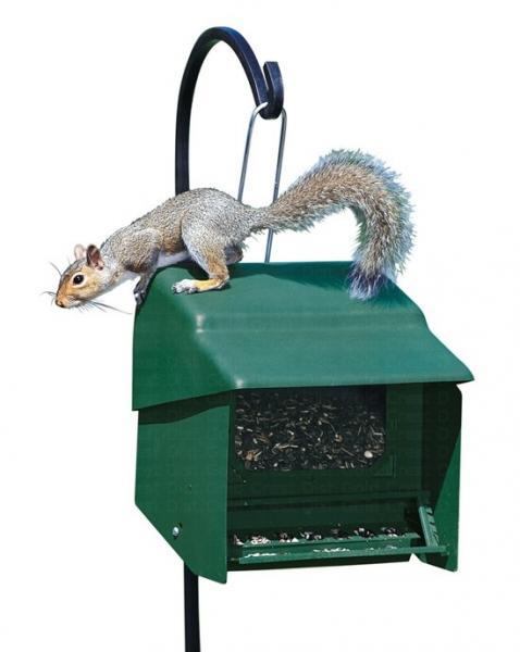 Homestead Super Stop-A-Squirrel Bird Feeder
