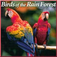 Naturescapes Birds of the Rain CD