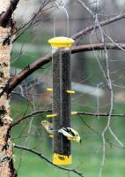 Woodlink Audubon Series Tails Up Finch Tube Bird Feeder