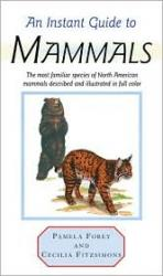 Steven M. Lewers Land Mammals Of The Northeast