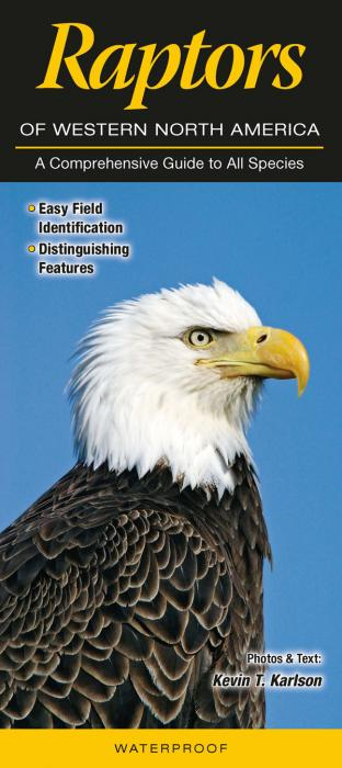 Quick Reference Publishing Raptors of Western North America