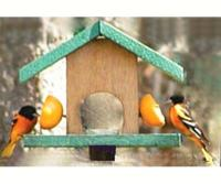 Songbird Essentials Oriole Bird Feeder, Cedar