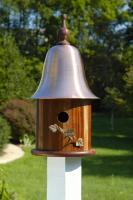 Heartwood Ivy Birdhouse, Mahogany