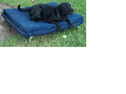 Blantex Pet Bed/Cot