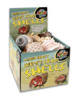 Hermit Crab Fancy Shells 24/bx
