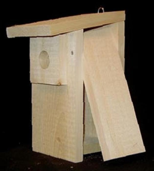 Economy Bluebird Box