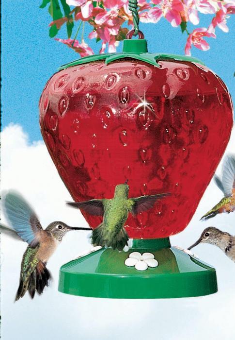 Perky Pet 48 Ounce Strawberry Hummingbird Bird Feeder