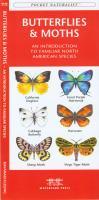 Waterford Butterflies & Moths