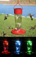 Songbird Essentials Solar Powered Color Changing Hummingbird Bird Feeder