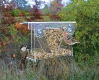Songbird Essentials Clear View Hopper Window Bird Feeder