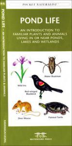 Pocket Naturalist Freshwater Fishes