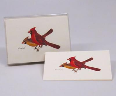 Steven M. Lewers & Associates Cardinal Notecards with Envelopes