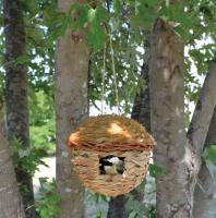 Songbird Essentials Round Hanging Grass Roosting Pocket