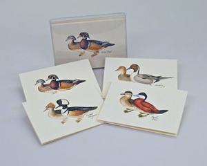 Steven M. Lewers & Associates Duck Notecard Assortment (4 each of 2 styles)