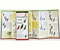 LEWERSHN156Sibley's Hummingbirds of N. America Folded Guide