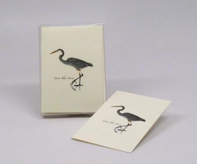 Steven M. Lewers & Associates Great Blue Heron Notecard Assortment (8 each of 1 style)