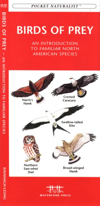 Waterford Birds of Prey