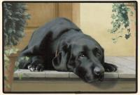 Fiddler's Elbow Black Lab Porch Doormat