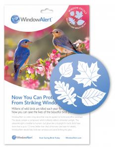 Birding & Animal Related Items by Window Alert