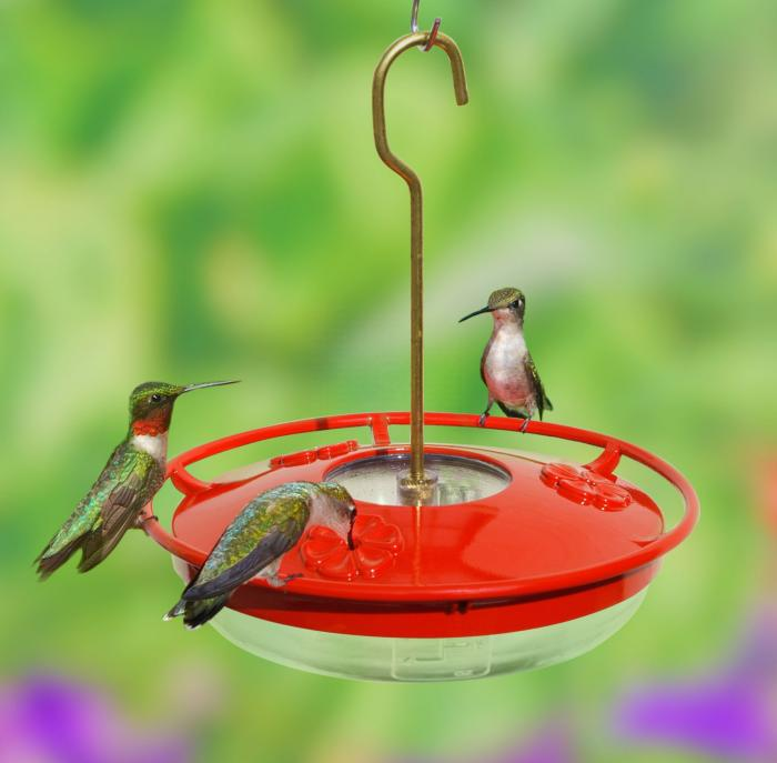 Aspects HummZinger 8 Ounce High View Hummingbird Bird Feeder