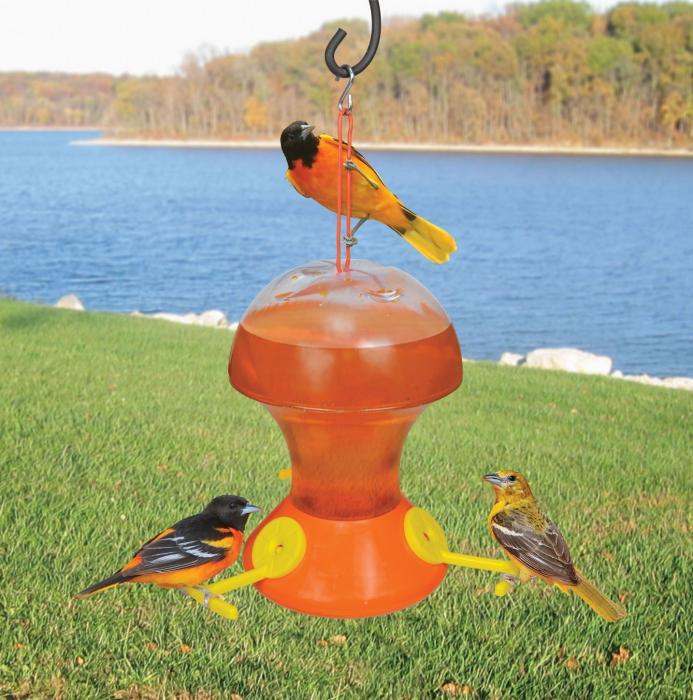 Bird Company Fliteline 48 Ounce Oriole Bird Feeder