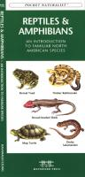 Waterford Reptiles & Amphibians