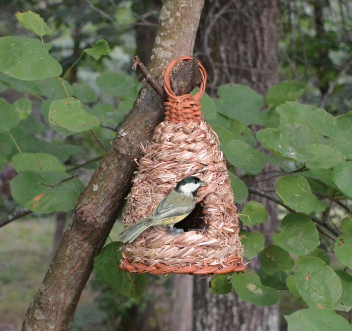 Songbird Essentials Roosting Pocket Hive Hanging Grass
