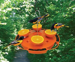 Oriole Feeders by Songbird Essentials