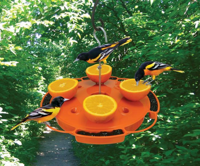 Songbird Essentials Ultimate Oriole Bird Feeder