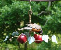 Songbird Essentials Oriole Fruit Oriole Bird Feeder