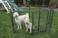 "Iconic Pet - Heavy Duty Metal TubePlaypen - 40"" Height"