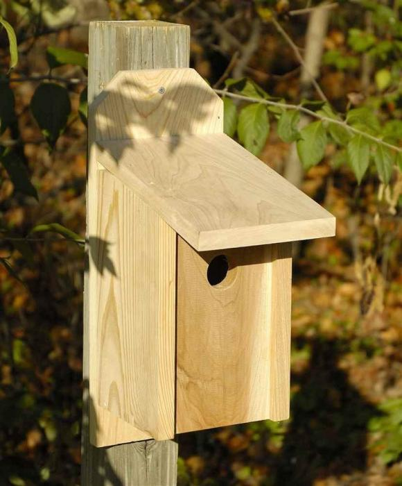 Heartwood Western Bluebird Joy Box Birdhouse