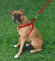 "Coastal Pet Products 6645 Comfort Wrap Adjustable Nylon Harness - 3/4"", Red"