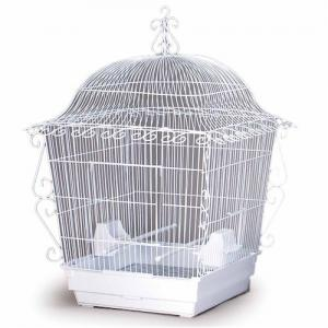 Bird Cages by Prevue Hendryx