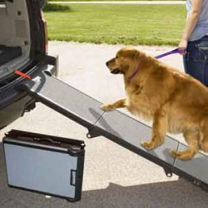 Pet Gear Portable Pet Ramp, Grey/Black