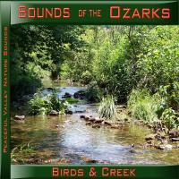 Peaceful Valley Productions Sounds of the Ozarks Birds & Creek CD