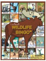 Lucy Hammett Games Wildlife Bingo