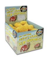 Hermit Crab Sponge 36/bx