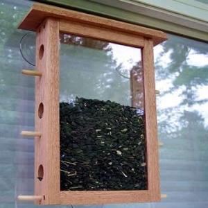 Coveside See Through Window Bird Feeder