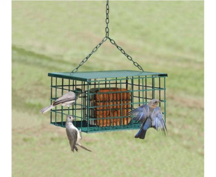 Songbird Essentials Squirrel Resistant Palace Suet Bird Feeder