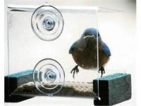 Songbird Essentials Mini Green Window Bird Feeder