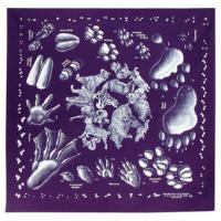 Animal Tracks Bandana, Single