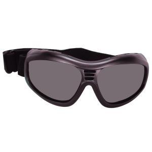 Bobster Action Eyewear Touring 2 Goggle, Black Frame, Smoked Anti-Fog Lens