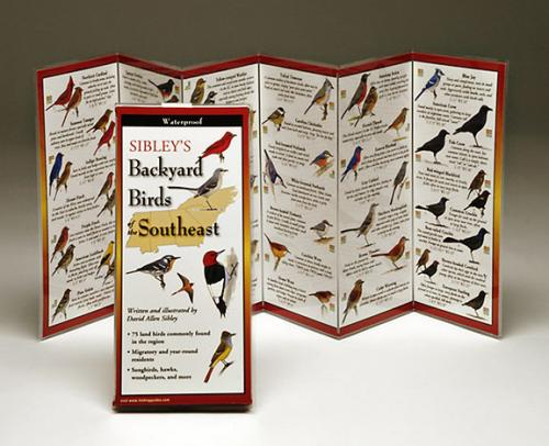 Steven M. Lewers & Associates Sibley's Backyard Birds Florida