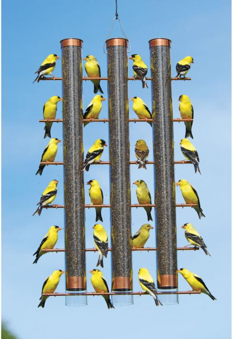 Songbird Essentials Copper Finches Favorite 3-Tube Design Finch Bird Feeder