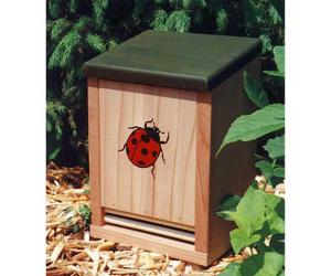 Bug & Insect Houses & Boxes by Schrodt