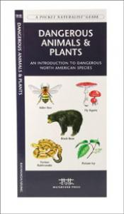 Steven M. Lewers Land Mammals Of The Southeast